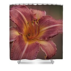 Daylily Blur Shower Curtain