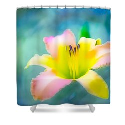 Daylily In Blue Shower Curtain