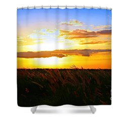 Shower Curtain featuring the photograph Day's End by DJ Florek