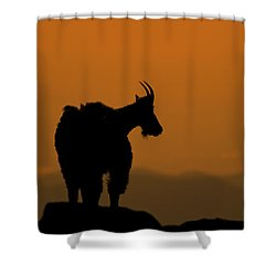 Shower Curtain featuring the photograph Day's End by Gary Lengyel