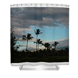 Days End Hawaii Shower Curtain by Ellen O'Reilly