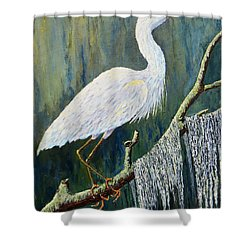 Days End Shower Curtain by Suzanne Theis