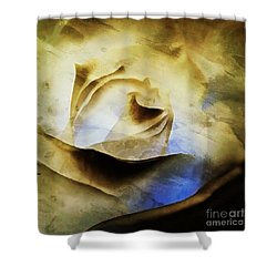 Shower Curtain featuring the painting Days Go By - Rose - Dreamscape by Janine Riley