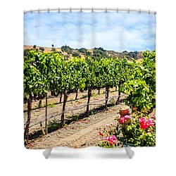 Days Of Vines And Roses Shower Curtain