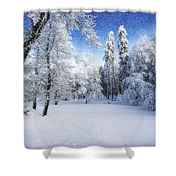 Days To Come Shower Curtain