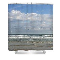 Daytona Beach 3 Shower Curtain