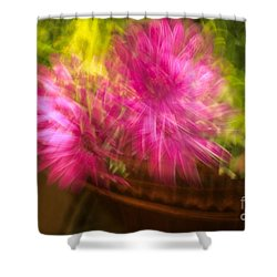 Dazed Shower Curtain by Cathy Dee Janes