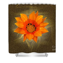 Dazzle Shower Curtain by Karen Lewis