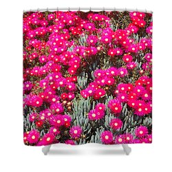 Dazzling Pink Flowers Shower Curtain
