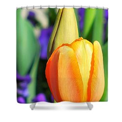 Dazzling Tulip Shower Curtain