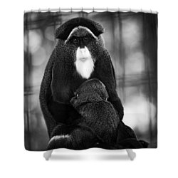 De Brazza's Monkey Shower Curtain