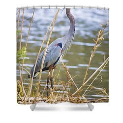 De Leon Springs Blue Shower Curtain by Deborah Benoit