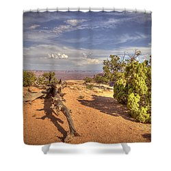Dead Cedar Canyonlands Shower Curtain
