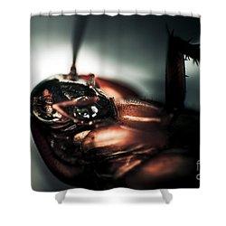 Dead Cockroach Shower Curtain