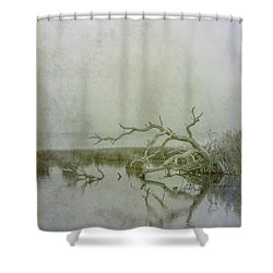 Shower Curtain featuring the digital art Dead In The Water by Randy Steele