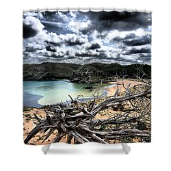Dead Nature Under Stormy Light In Mediterranean Beach Shower Curtain