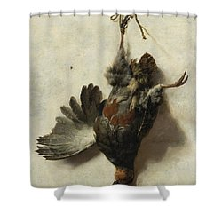 Dead Partridge Hanging From A Nail Shower Curtain