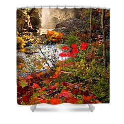 Dead River Falls Foreground Plus Mist 2509 Shower Curtain