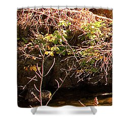 1 Of 6 Dead River Falls  Marquette Michigan Section Shower Curtain by Michael Bessler
