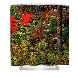 6 Of 6 Dead River Falls  Marquette Michigan Section Shower Curtain