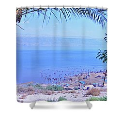 Dead Sea Overlook 2 Shower Curtain
