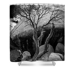 Dead Tree And Boulder At Joshua Tree Shower Curtain
