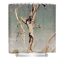 Dead Tree, Outback. Shower Curtain