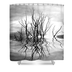 Shower Curtain featuring the photograph Dead Trees Bw by Susan Kinney