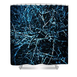 Dead Trees  Shower Curtain by Jorgo Photography - Wall Art Gallery