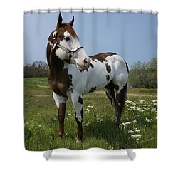 Dealer Posing Proud Shower Curtain by Mick Anderson