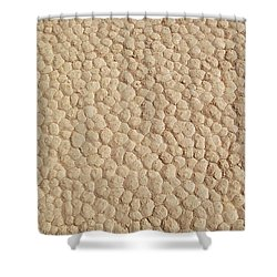 Death Valley Mud Shower Curtain