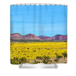 Death Valley Super Bloom 2016 Shower Curtain by Peter Tellone