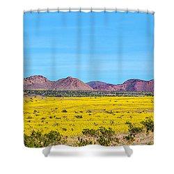 Death Valley Super Bloom 2016 Shower Curtain
