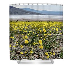 Death Valley Super Bloom Shower Curtain