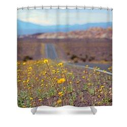 Death Valley Superbloom 101 Shower Curtain