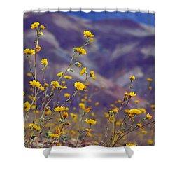Death Valley Superbloom 103 Shower Curtain