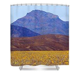 Death Valley Superbloom 201 Shower Curtain