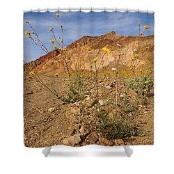 Death Valley Superbloom 202 Shower Curtain