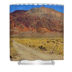 Death Valley Superbloom 205 Shower Curtain