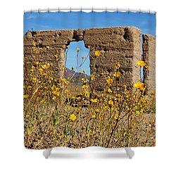 Death Valley Superbloom 404 Shower Curtain