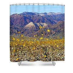 Death Valley Superbloom 405 Shower Curtain