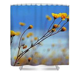 Death Valley Superbloom 502 Shower Curtain