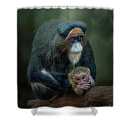 Debrazza's Monkey And Baby Shower Curtain