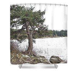 December Dancer Shower Curtain