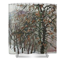December Shower Curtain