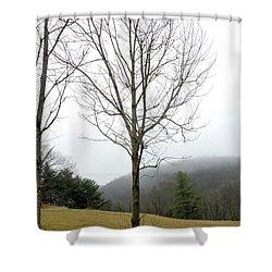 December Mist Shower Curtain