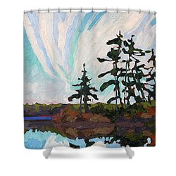 December Morn Shower Curtain by Phil Chadwick