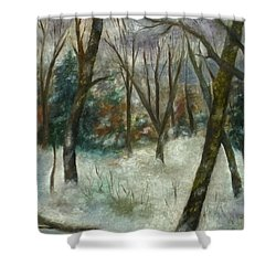 December On Cooper Hill Shower Curtain
