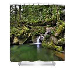 Deception Creek Shower Curtain