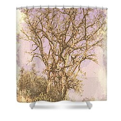 Deciduous Shower Curtain